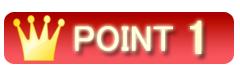POINT 1 1